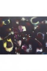 Nächtliches Leuchten (40x50 cm)